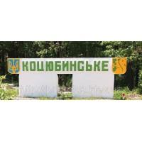 Заправка картриджей, прошивка и ремонт принтеров в Коцюбинском без выходных